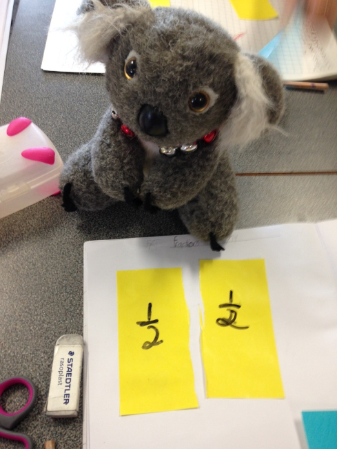 This Koala Wants Knowledge!